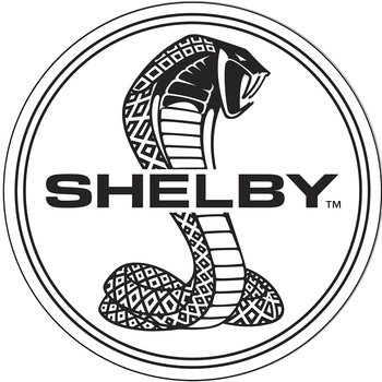 SHELBY LOGOS | BUILD YOUR OWN  NEON CLOCK