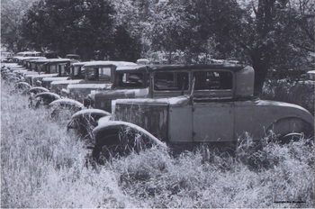 Old Row of Cars | Mo Hernandez