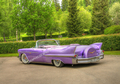 PM-11 50'S PURPLE CADILLAC